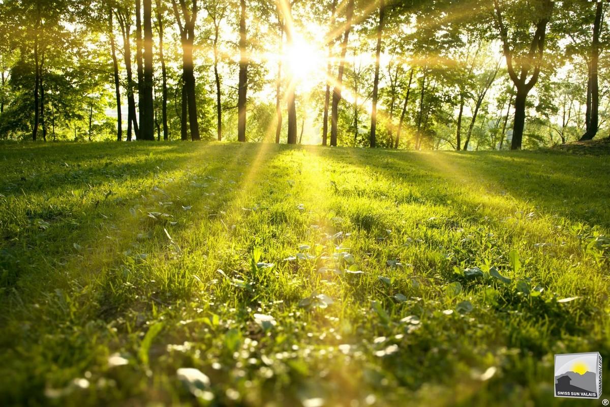 21.Swiss Sun Valais ® Vous nous confiez la vente de votre terrain en toute quiétude en Valais Suisse. 1er réseau immobilier du Valais ®